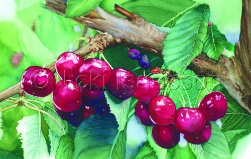 Chubby Cherries
