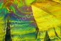 Acetimide crystal 100x