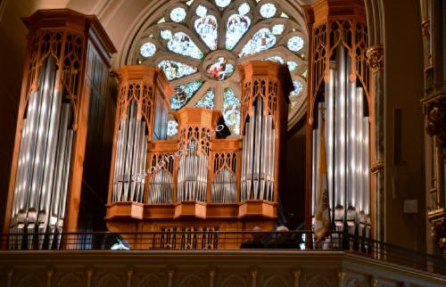 Savannah, Georgia Cathedral Organ Pipes