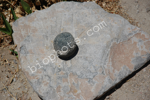 Native American Grinding Stone