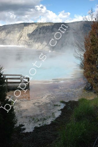 Thermal Pool at Yellowstone National Pk.