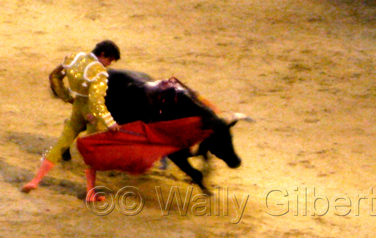 Bullfight #2 - Madrid (large view)