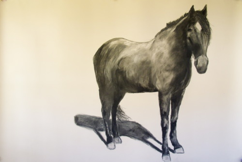 Nancy Whitin's large-scale dramatic drawing of Civil War Horse Fly. (large view)