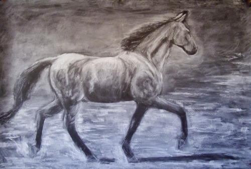 Nancy Whitin's large scale drawing of Robert E. Lee's horse Traveller (large view)