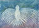 Dove (thumbnail)