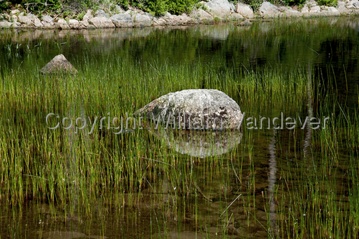 Bubblen Pond II, Acadia (large view)