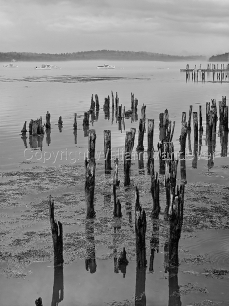 Wiscasset Pilings (large view)