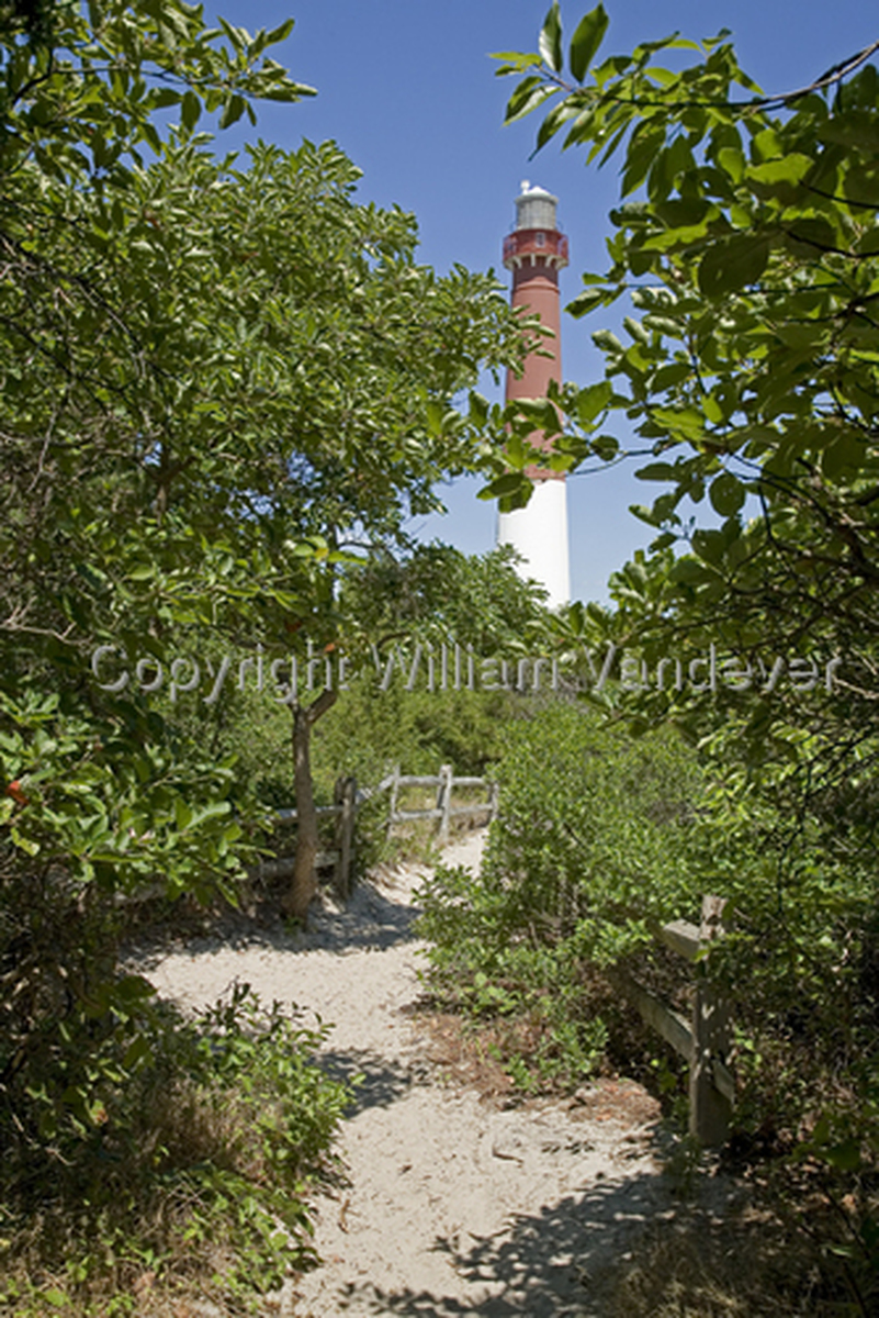 Barnegat Light Path (large view)