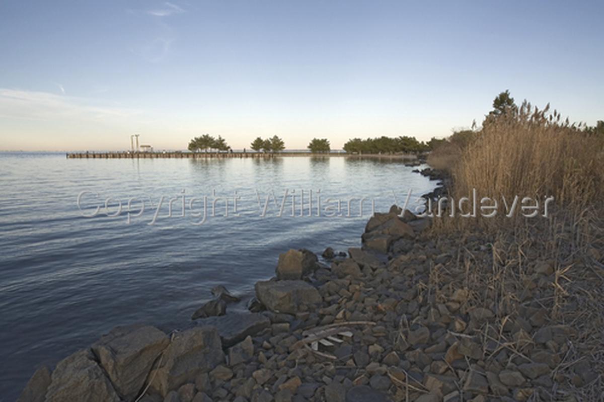 Cove / Barnegat  Bay (large view)