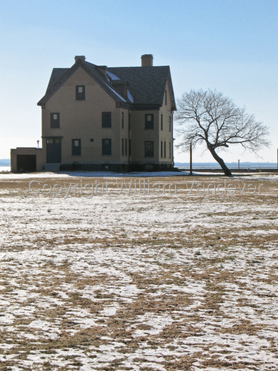 Sandy Hook Solo House & Tree (large view)