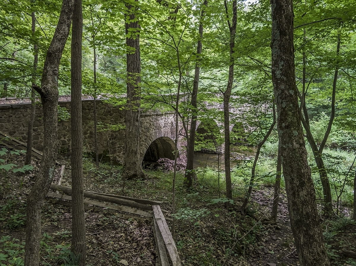 Bridge and Forest, Bowman's Hill (large view)