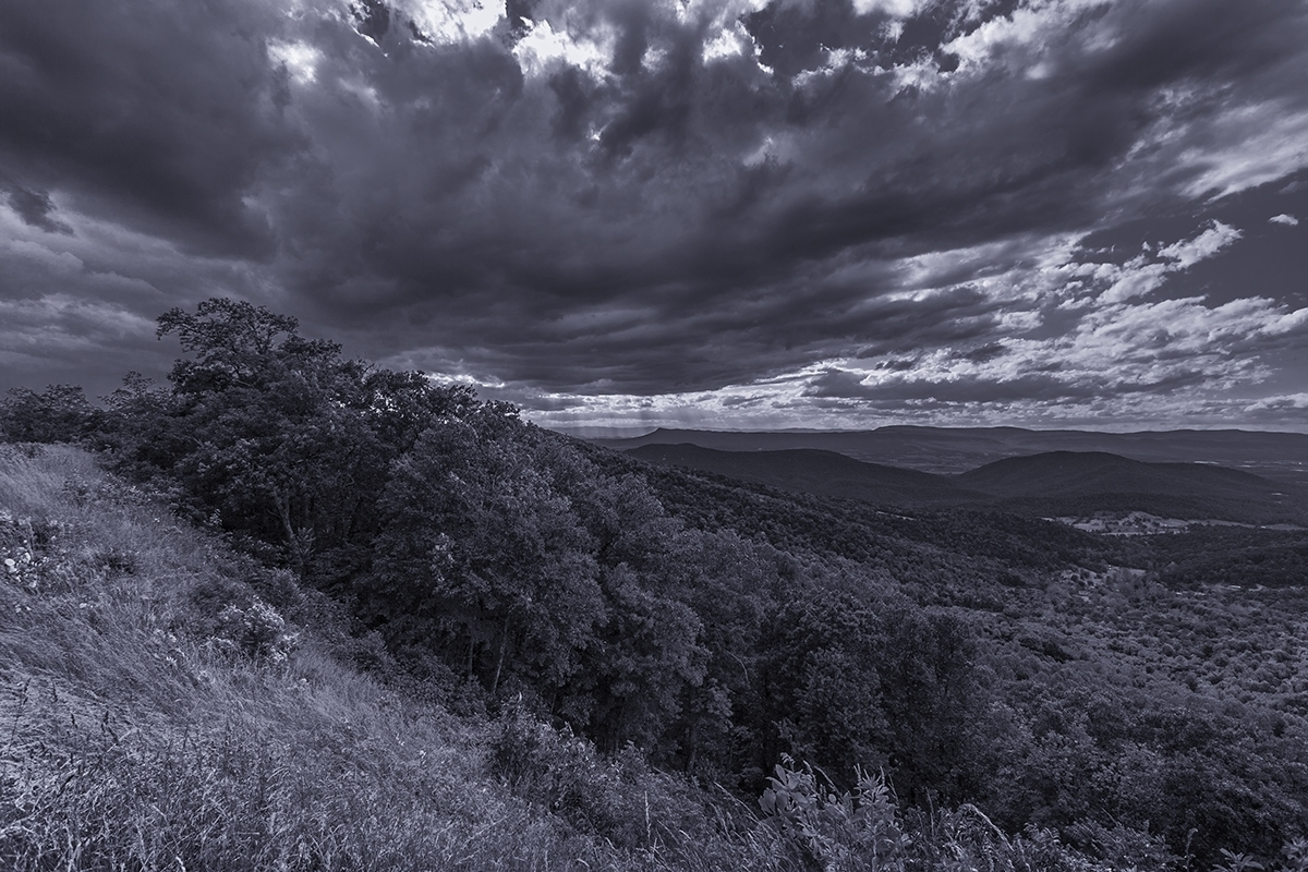 Stormy Sky and Trees - Skyline Drive  (large view)