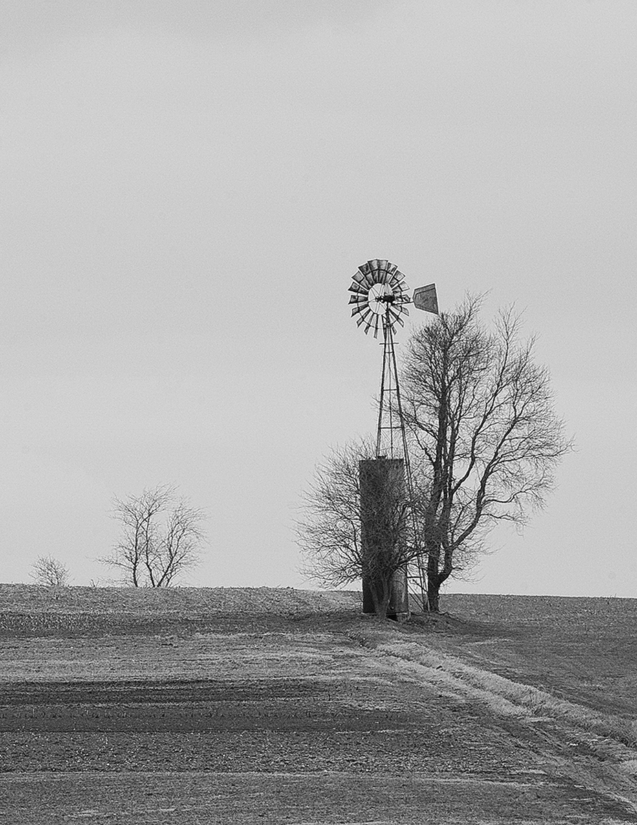 windmill and Tree - Lancaster County (large view)