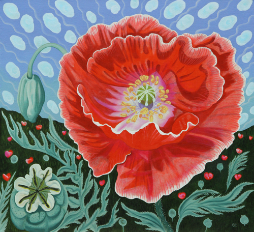 Banded Poppy by Peggy Clark Lumpkins