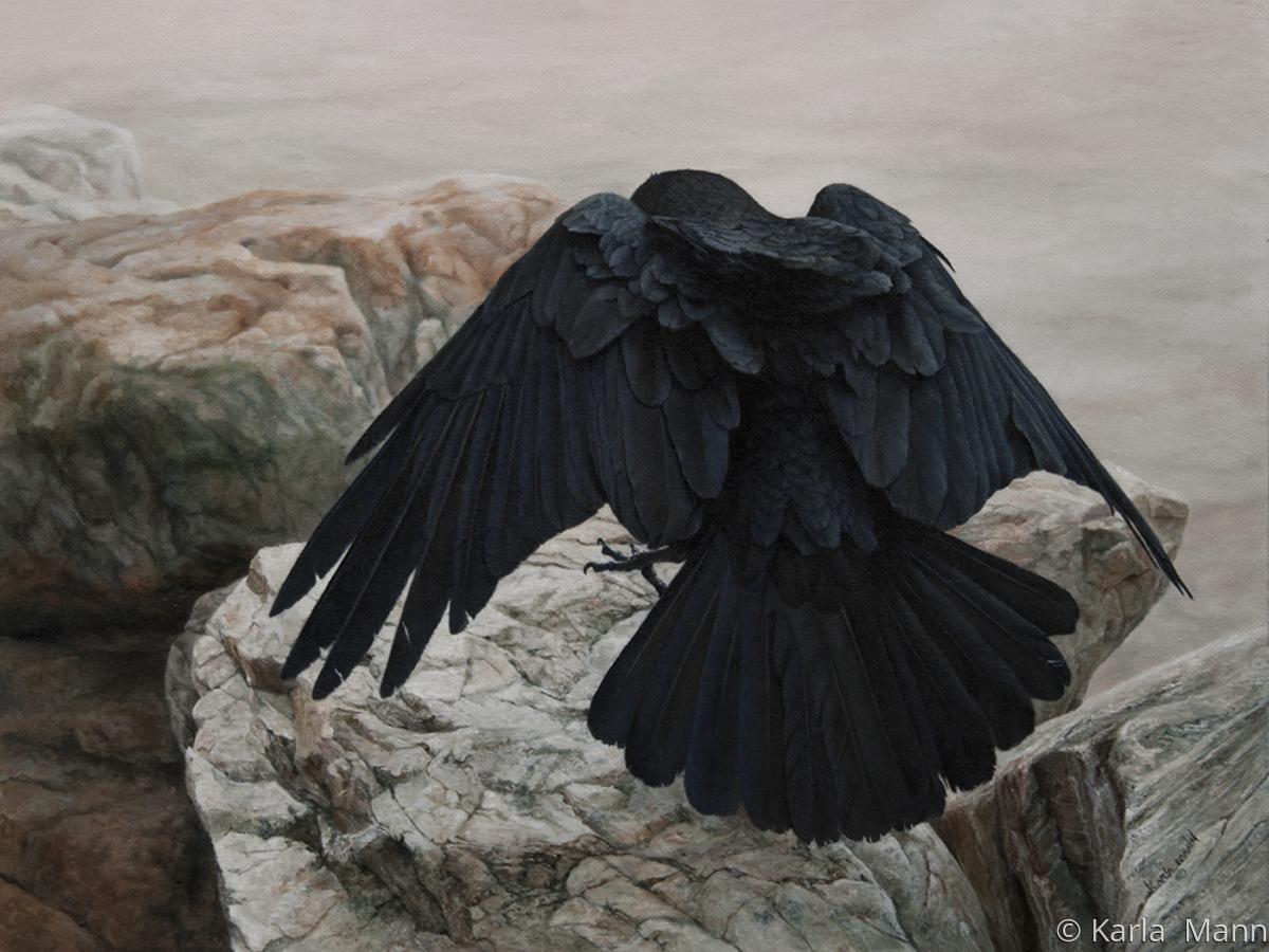 Tis A Raven (large view)