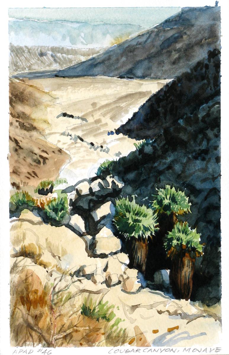 Cougar Canyon, Mojave (large view)