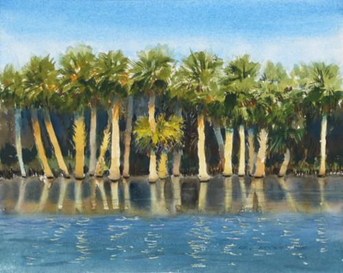 Flooded Palmettos