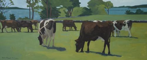 Grazing Herd