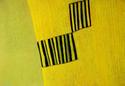 Corn Yellow Close Up (thumbnail)