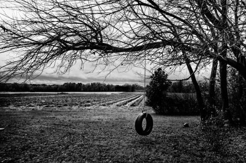 Swing / Field