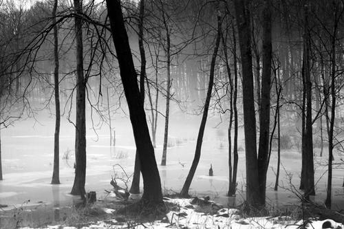 Ice Pond by Yoram Gelman Photography:   Art through Light . . . .