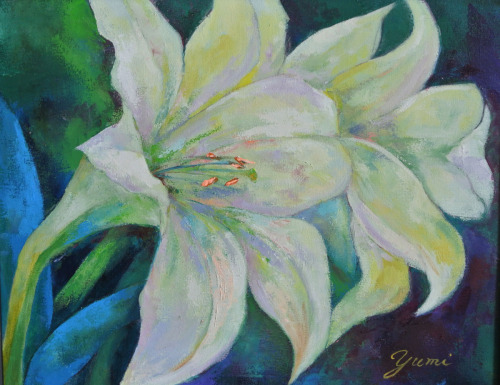 White Lily for You A